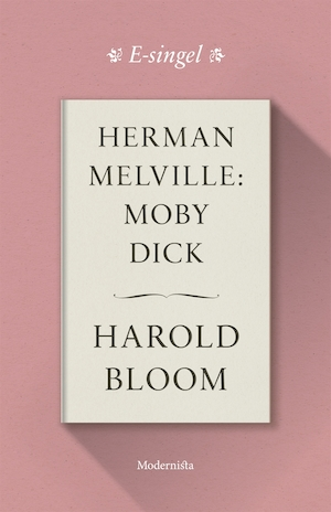 Herman Melville: Moby Dick